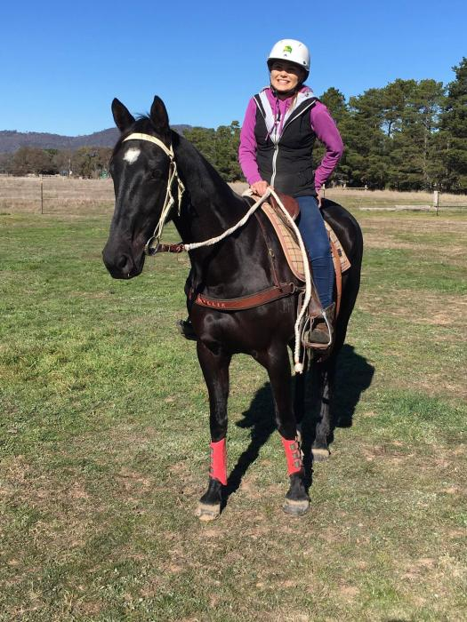 Talented Black Heartacre Gelding
