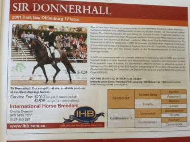 The Sire - Sir Donnerhall