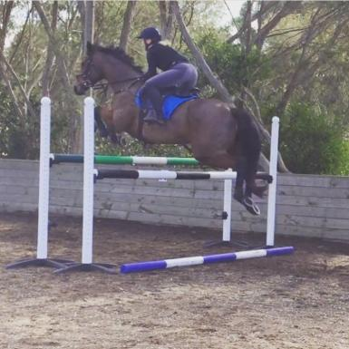 Clearing 1.20m