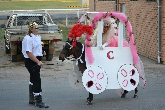 Jellybeans, Bomb Proof, Beginners Pony