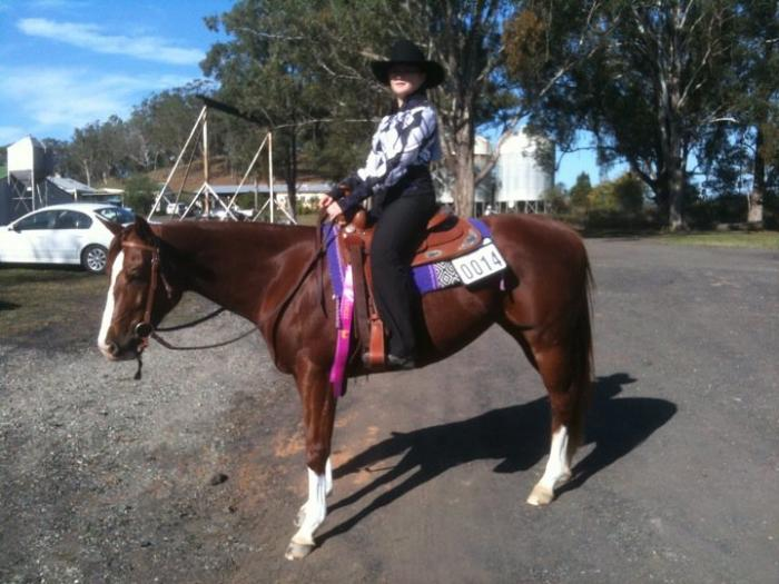 6yo 15hh Paint Bred Mare