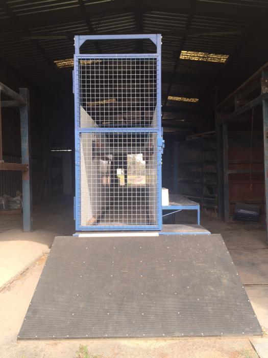 Horse Treadmill by Classic Treadmills