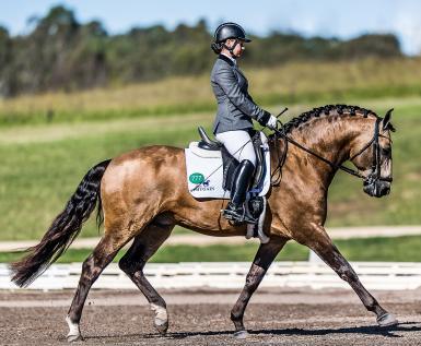 SYDNEY CDI - Reserve Champion FEI Para Equestrian Grade II