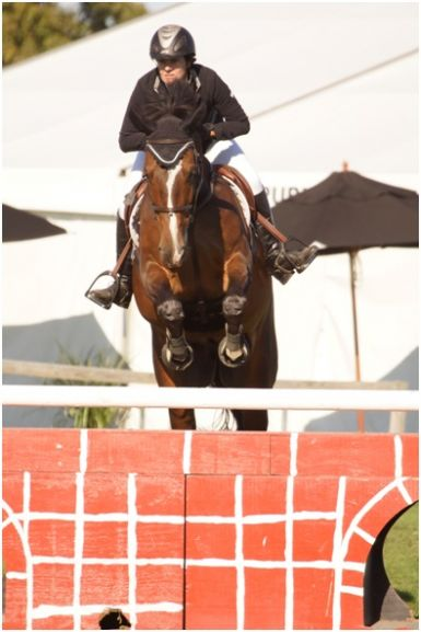 Competing in the 1.15m at HOY, March 2013
