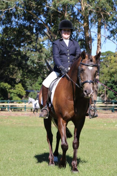 Pony Dressage Champion - 14hh Welsh Arabian