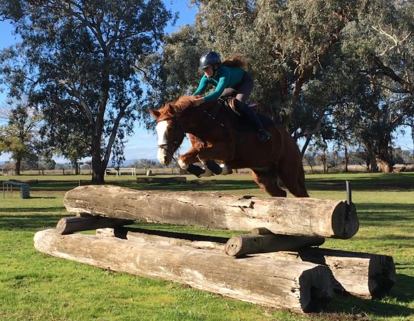 Super jumping pony!