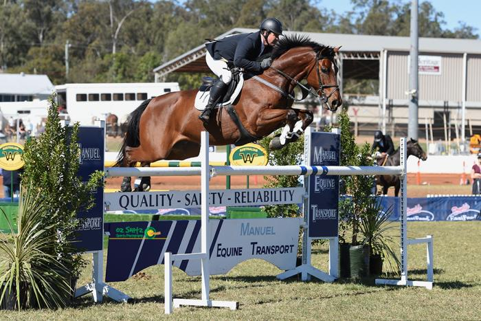 Top Class Jumping Horse, by Vivant