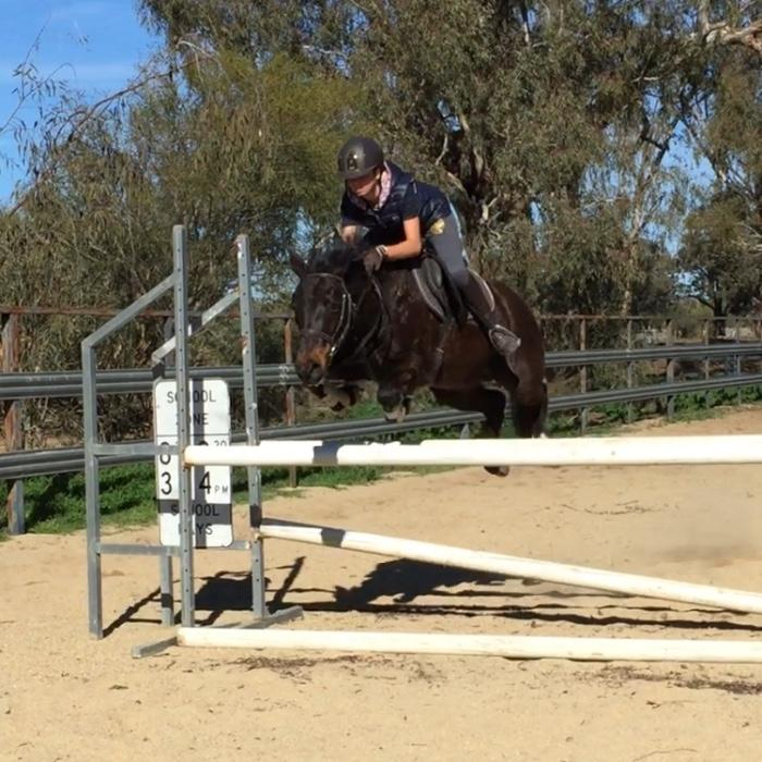 Superstar Showjumping Pony