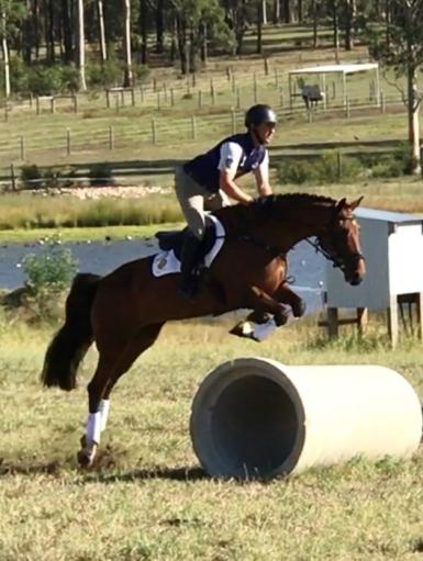 Winning ACE National Tour Assessment Ridden & Jumping