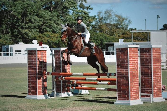 Gypsy Geneva - Eventing & Showjumping Star