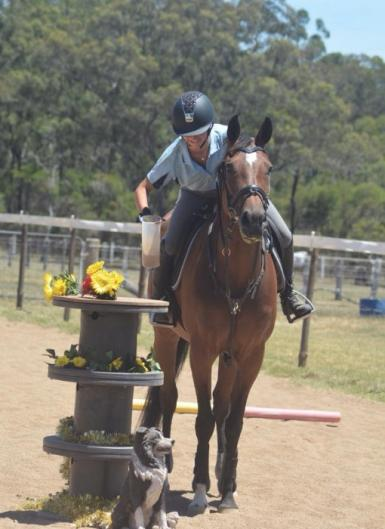 Working equitation 2018