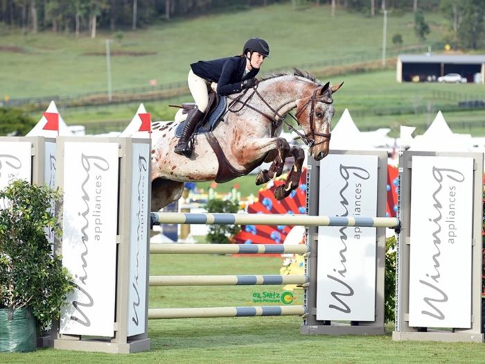 Careful Kind Showjumper