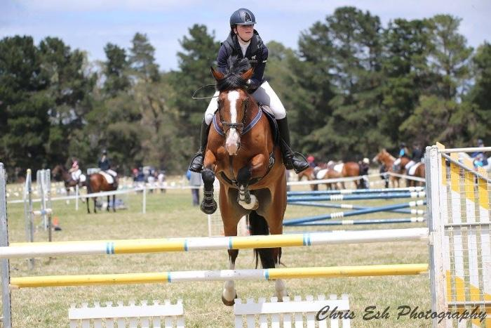Ultimate Interschools/Adult Rider Allrounder