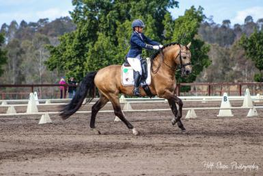 NSW State Dressage Championships - September 2018