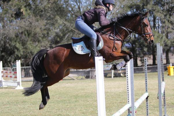 Superstar Jumping pony