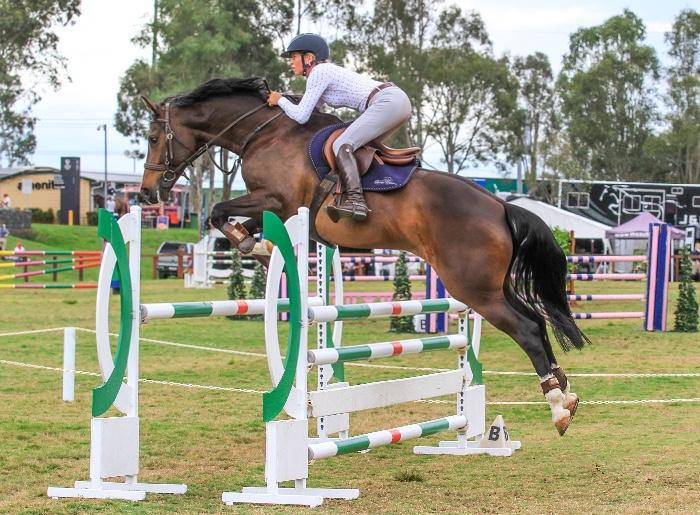 Brave powerful jumping mare