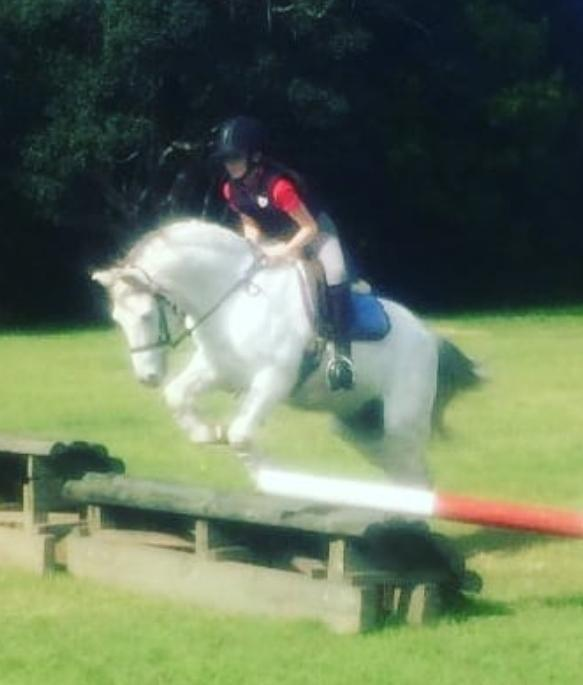 Super safe kids all rounder pony