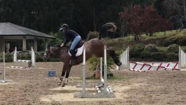First jump under saddle
