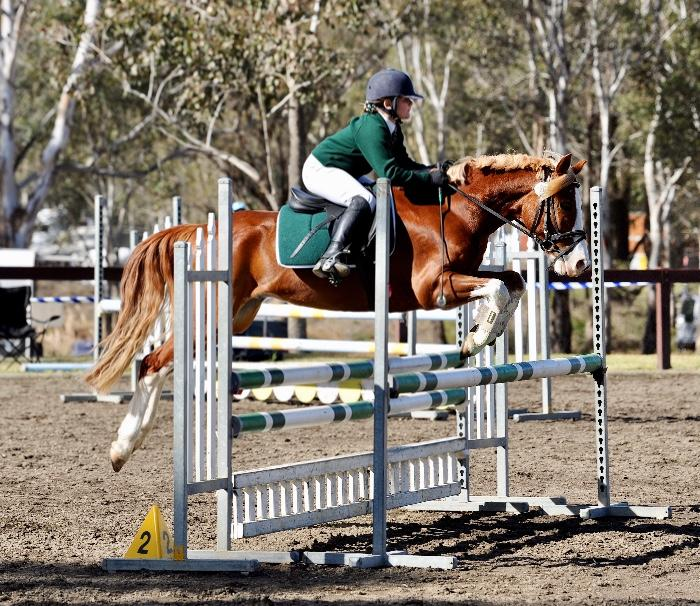 Ultimate Competitive Jumping Pony