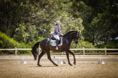 PonyDressage-182114-(ZF-9469-71639-1-004).jpg