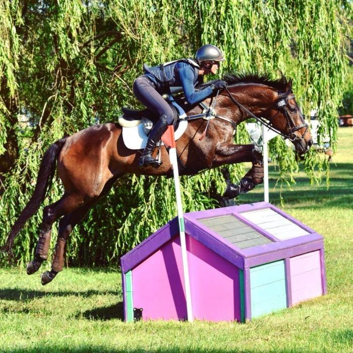 Uncomplicated and straight forward fun Eventer