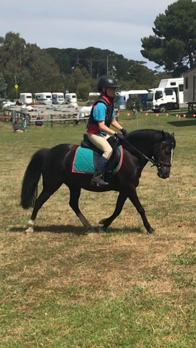 Safe and Competitive Child's Pony