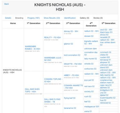Sire: Knights Nicholas - open Campdraft, Challenge and Show Champion