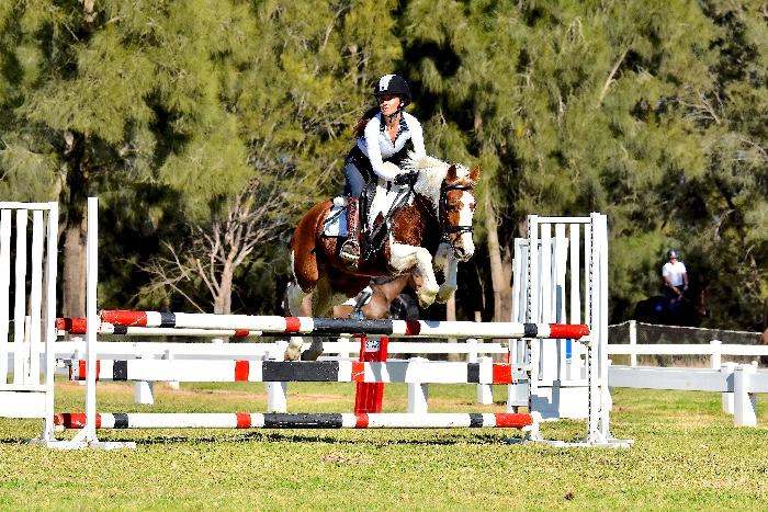 SUPER talented jumping Pony!