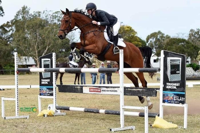 Ultimate juniors showjumping mount