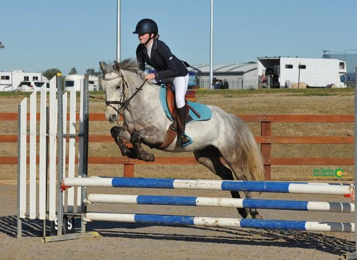 Competitive Jumping Pony