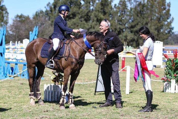 NSW's Top Competition Pony