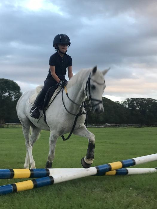 Stunning Child Pony - PRICE REDUCED