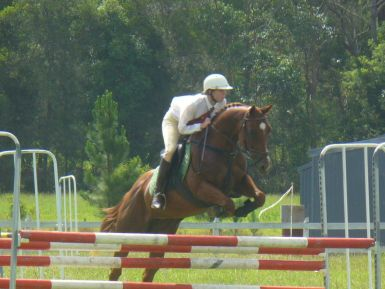 Camden Haven Showjumping Championships