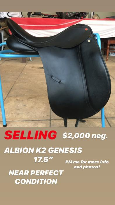 "Albion K2 Dressage Saddle 17""5"