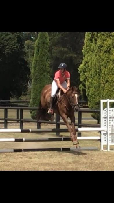 Encosta de Lago young event horse for sale
