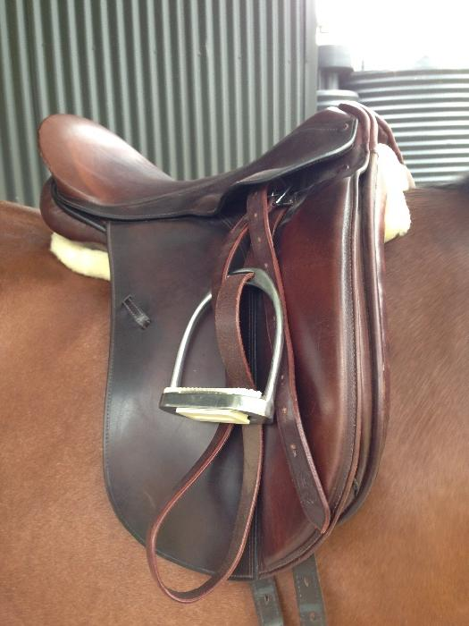 Graeme Murphy Show Saddle