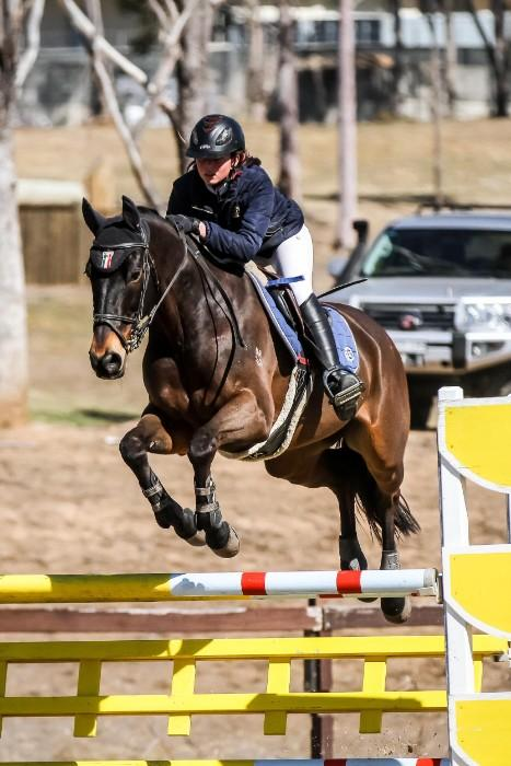 Competitive Warmblood Interschool Mount