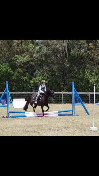 Super pony all rounder