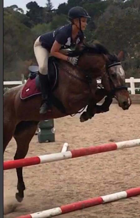 EOI: Appy Mare allrounder