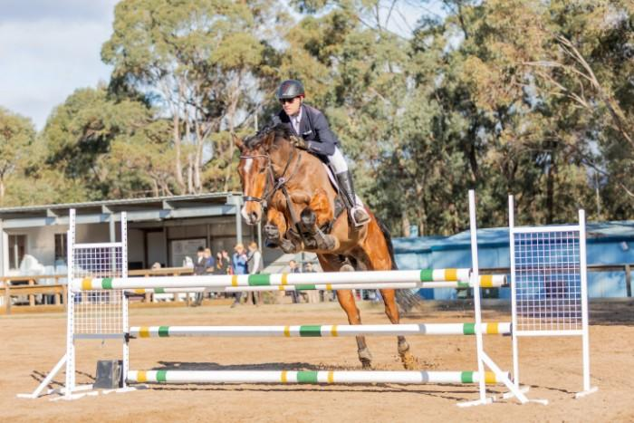 Ashleigh Contraband quality showjumper