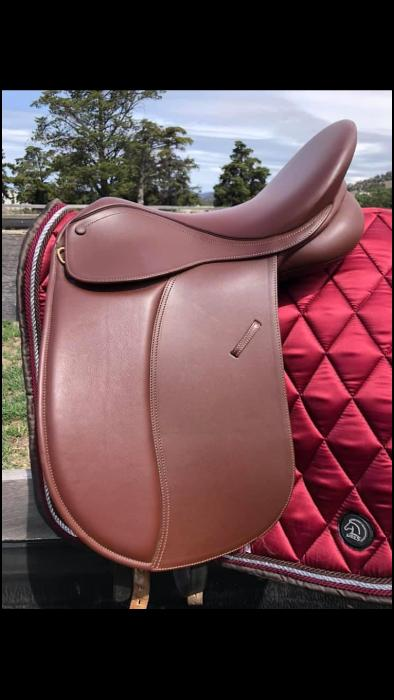 Collegiate Classic Show/Dressage Saddle
