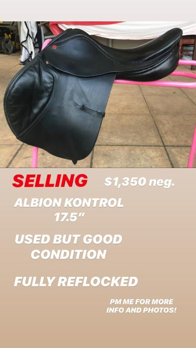 Albion Jumping Saddle 17'5