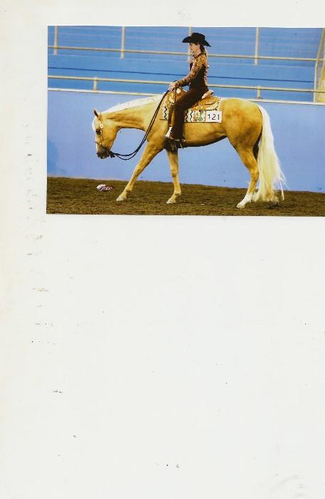 Western Pleasure Bred Mare