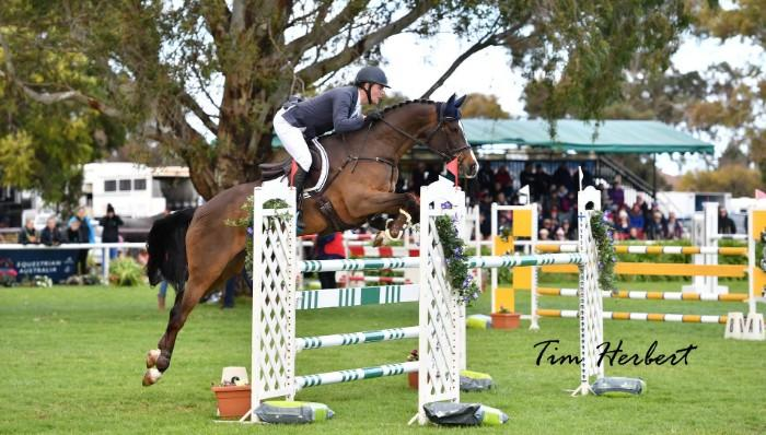 Riverbreeze- Talented 4* Eventer