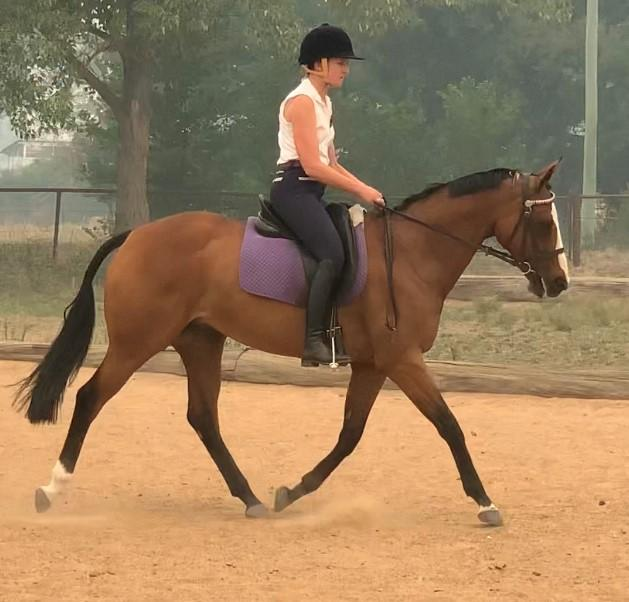 Eligible Newcomer Hack with BLING & Temperament