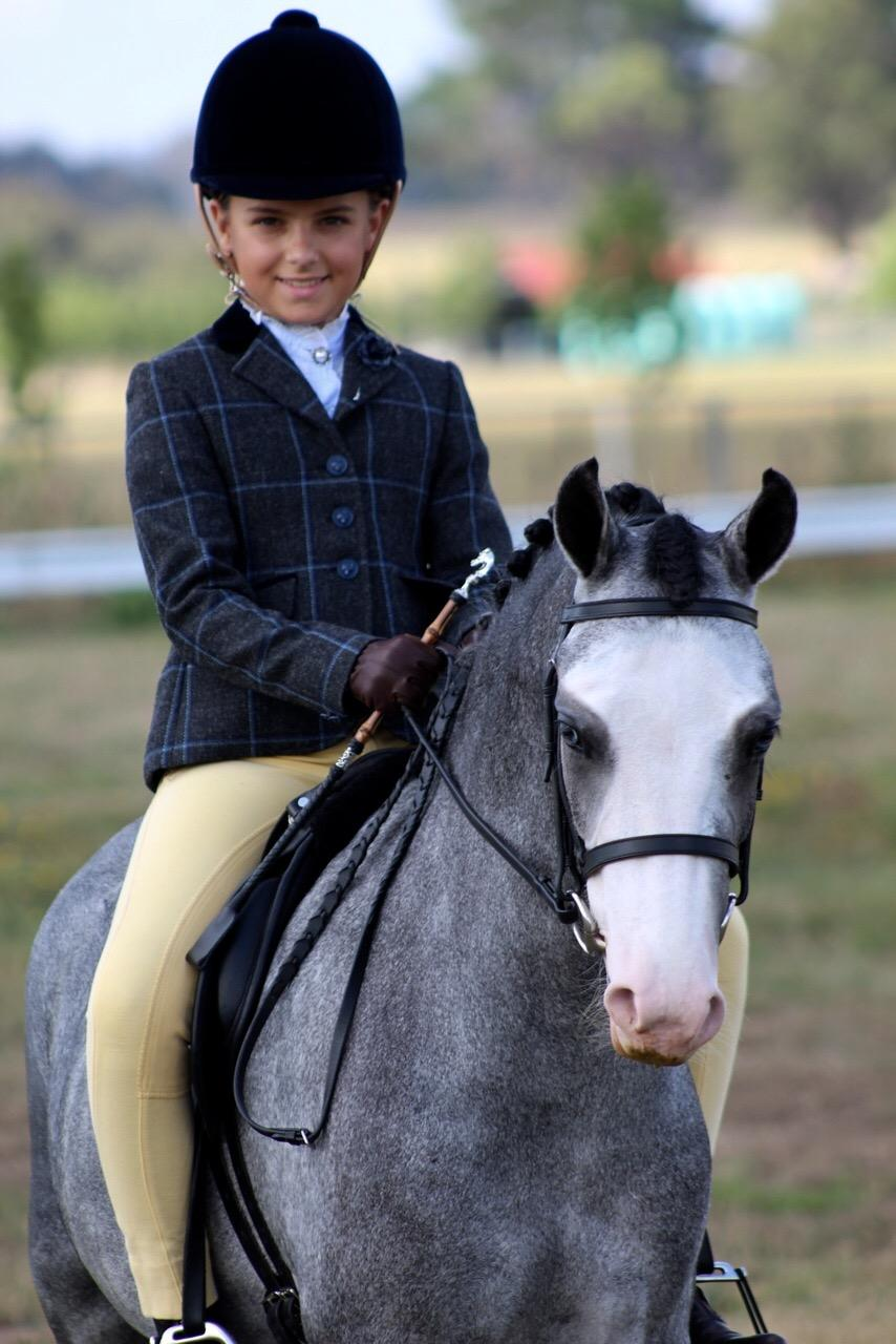 Leadrein child's show hunter pony