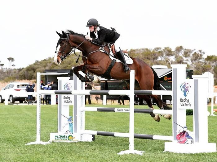 Ultimate Junior/Inter-school/Young Rider Horse