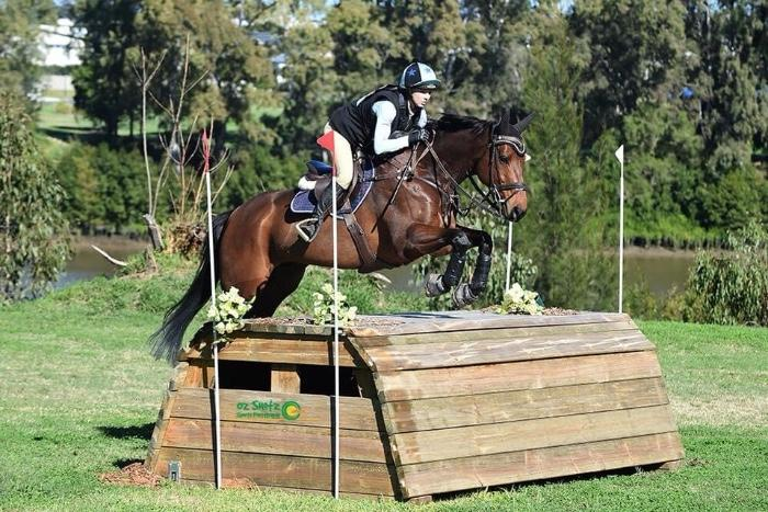 EL SANTO - Talented Eventer