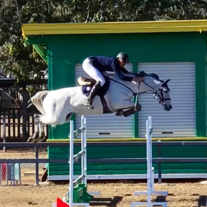 World Cup showjumper