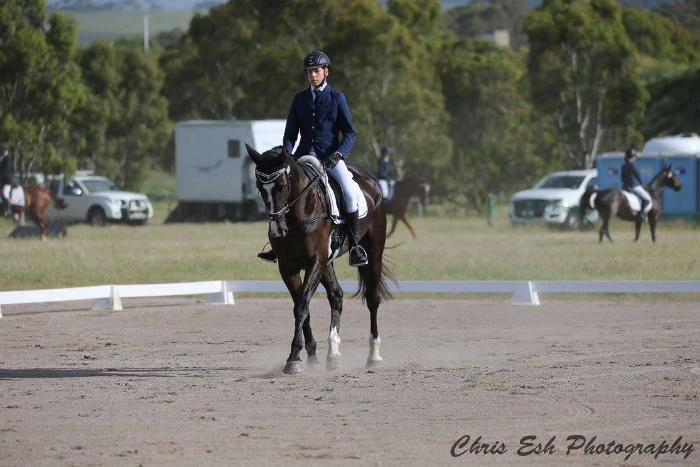 Amazing ARC HRCAV Interschool Dressage mount
